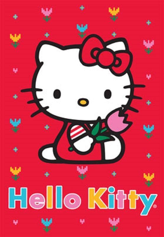 Koberec HELLO KITTY 756 80x120