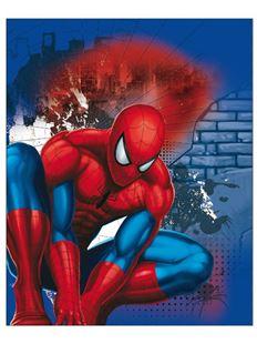 Obrázek Dětská oboustranná auto deka Spiderman 120x150 cm